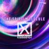 karmatrix   vicious mantra the spirit molecule ep out soon