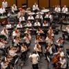 Strauss: Ein Heldenlaben