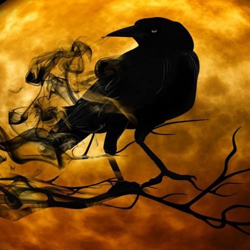 Raven_13