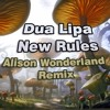 Dua Lipa New Rules Alison Wonderland Remix Remake Mp3