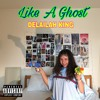Like A Ghost- Delaih King ( beats by Z.Y.N.K prod. by Jake Adjic)