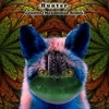 Galantis - Hunter (Maximillian Remix)