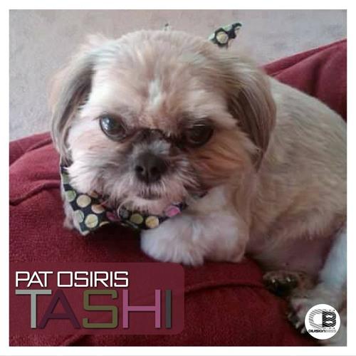 Pat Osiris - Tashi   OUT NOW! on all good stores