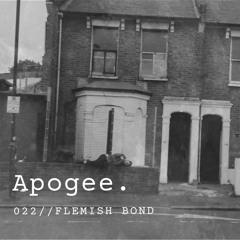 Apogee 022 // Flemish Bond