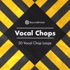 Vocal Chops Vol.1 - SoundShock