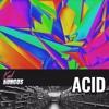 Karl Hungus - Acid mp3