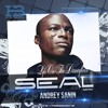 Seal - Life On The Dancefloor (Dj Andrey Sanin Remix)