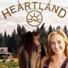 *!123MOVIES!*** Watch Heartland Season 11 Episode 4 : How to Say Goodbye Download