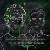 Lost Frequencies & Netsky X Bassjackers Vs. VSNS - Here With Maharaja (TOSAK & DI BOOM Mashup)