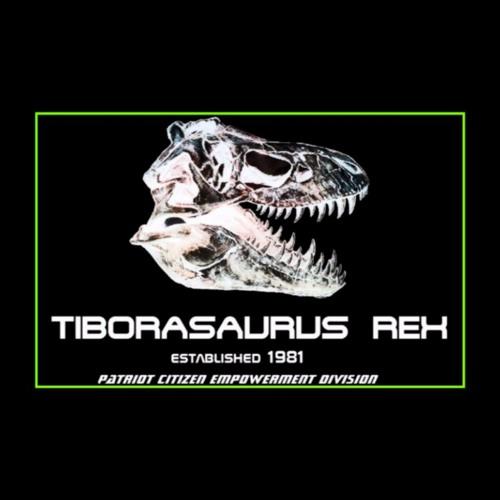 Rex Reviews Segments - By Topic