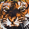 Survivor - Eye Of The Tiger (V3RA & Brodie Laing Remix) *Free Download*
