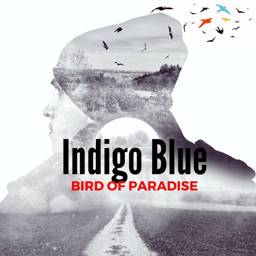 Bird Of Paredise