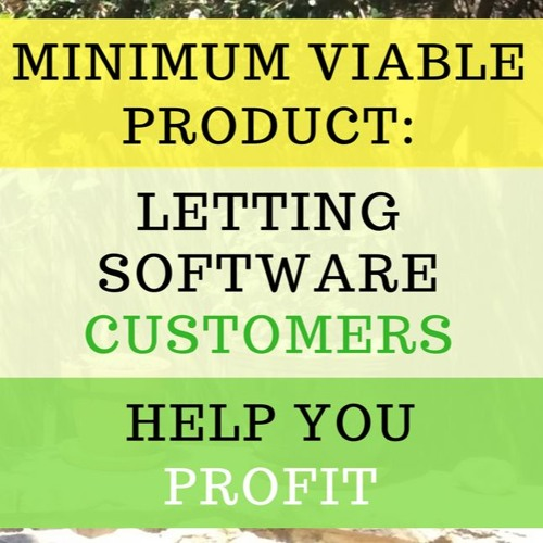 Minimum Viable Product - Letting Software Customers Help YOU Profit