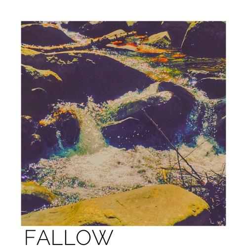 Fallow [prod. by VYLAN]