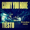 Tiesto - Carry You Home (Ft. Stargate & Aloe Blacc) (Brandew Remix)