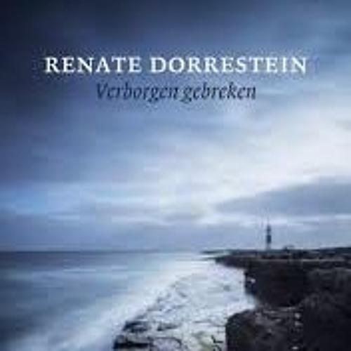 Verborgen gebreken Renate Dorrestein, voorgelezen door Marjolein Algera