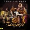 Temmie Ovwasa   Bamidele