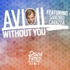Avicii ft. Sandro Cavazza - Without You (Disco Fries Remix)