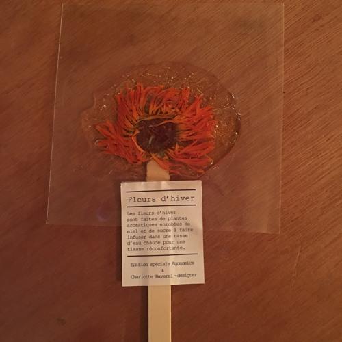 Winter Flower by Charlotte Baverel on Comet Radio