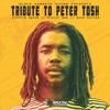 Black Sabbath Sound: Tribute to Peter Tosh (The Steppin' Razor >< Bush Doctor >< Mystic Man)