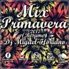 Mix Primavera 2017 (Bésame) - Dj Miguel Floriano