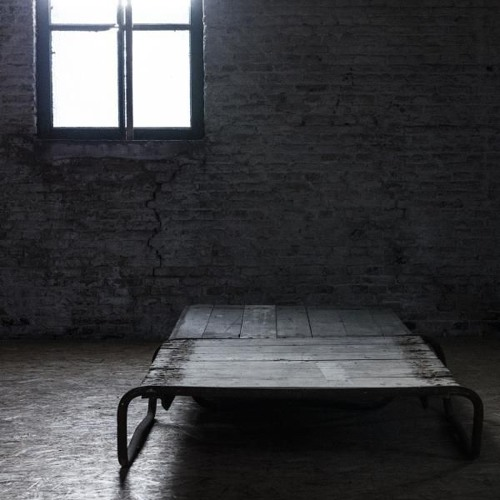 Charnia - Het Laatste Licht