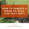 How To Remove A Shrub Or Bush – The Easy Way