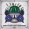 Dirt Monkey & Shank Aaron - What It Is Ft. Born I Music (BAR9 Remix)