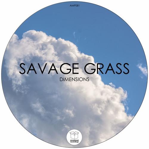 Savage Grass - Another Dimension (Paul Schmidpeter Remix)
