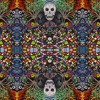 RUN DMT - LDA Feat. Subtronics (Zebbler Encanti Experience Remix)
