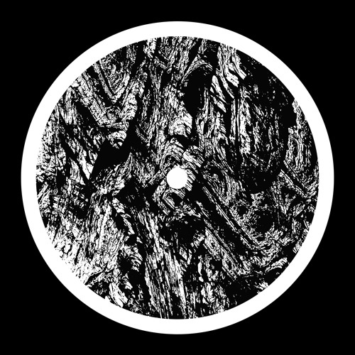 Antenes - Shifting Zones [SSX09]
