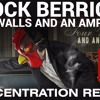 Brock Berrigan - Four Walls And An Amplifier Concentration Repeat