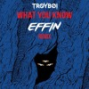 TroyBoi - What You Know (Effin Remix) mp3