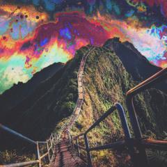 """""""acid adventure"""""""