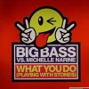 Big Bass vs. Michelle Narine - What You Do.mp3