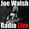 Joe Walsh Sound Check And Ham Radio