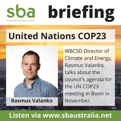 SBA COP23 Preview Briefing Series Ep04 - Rasmus Valanko of WBCSD
