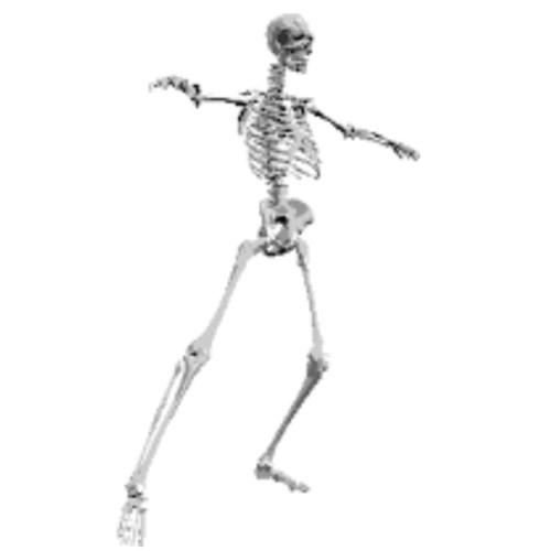 движущие картинки скелета могли поверить