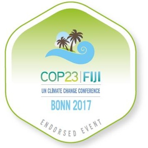 What is at stake at the new UN Climate Negotiations? A green view on COP23.
