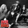 Stay Together (Mr. Big Cover)