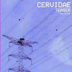 Cervidae (Teaser)