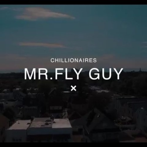 Mr. Fly Guy