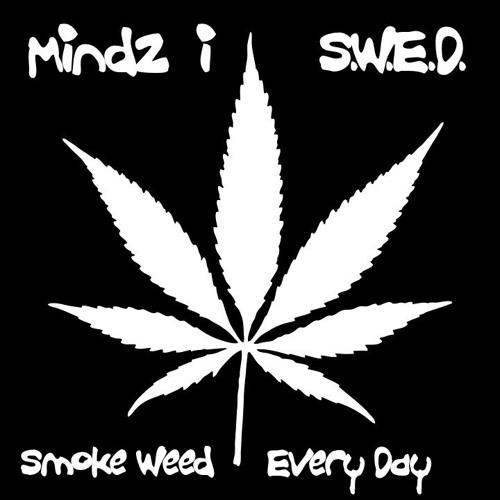 S.W.E.D.