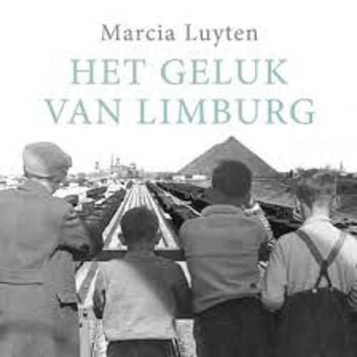 Het geluk van Limburg - Marcia Luyten, voorgelezen door Tessel Blok