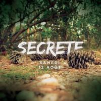 Dj set_SECRETE Party w/ LAURENT GARNIER_12 aout 2017