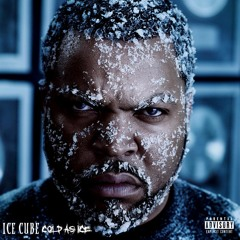 THE DON MEGA BEST OF ICE CUBE
