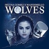 Selena Gomez Wolves (Ft. Marshmello) Shay T Remix