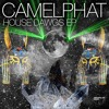 CamelPhat - Magic Stick - Repopulate Mars