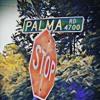 Palma Road (Intro) by Brandon Ray