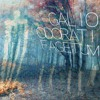 Galio_Odorati_Fagetum - A Forest and Psytrance Mix